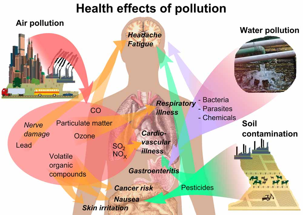 health effects of air pollution on Human