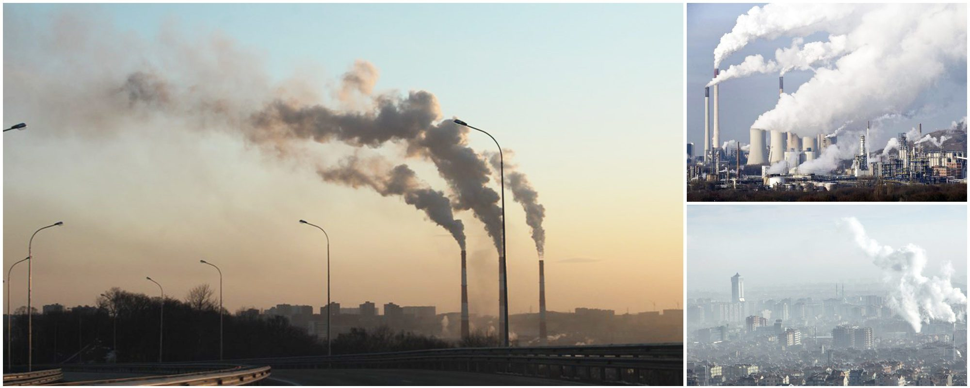 air pollution effects and solutions Latest articles on air pollution in the uae air pollution: sources and effects in urban areas and how it affect the investment and economy.