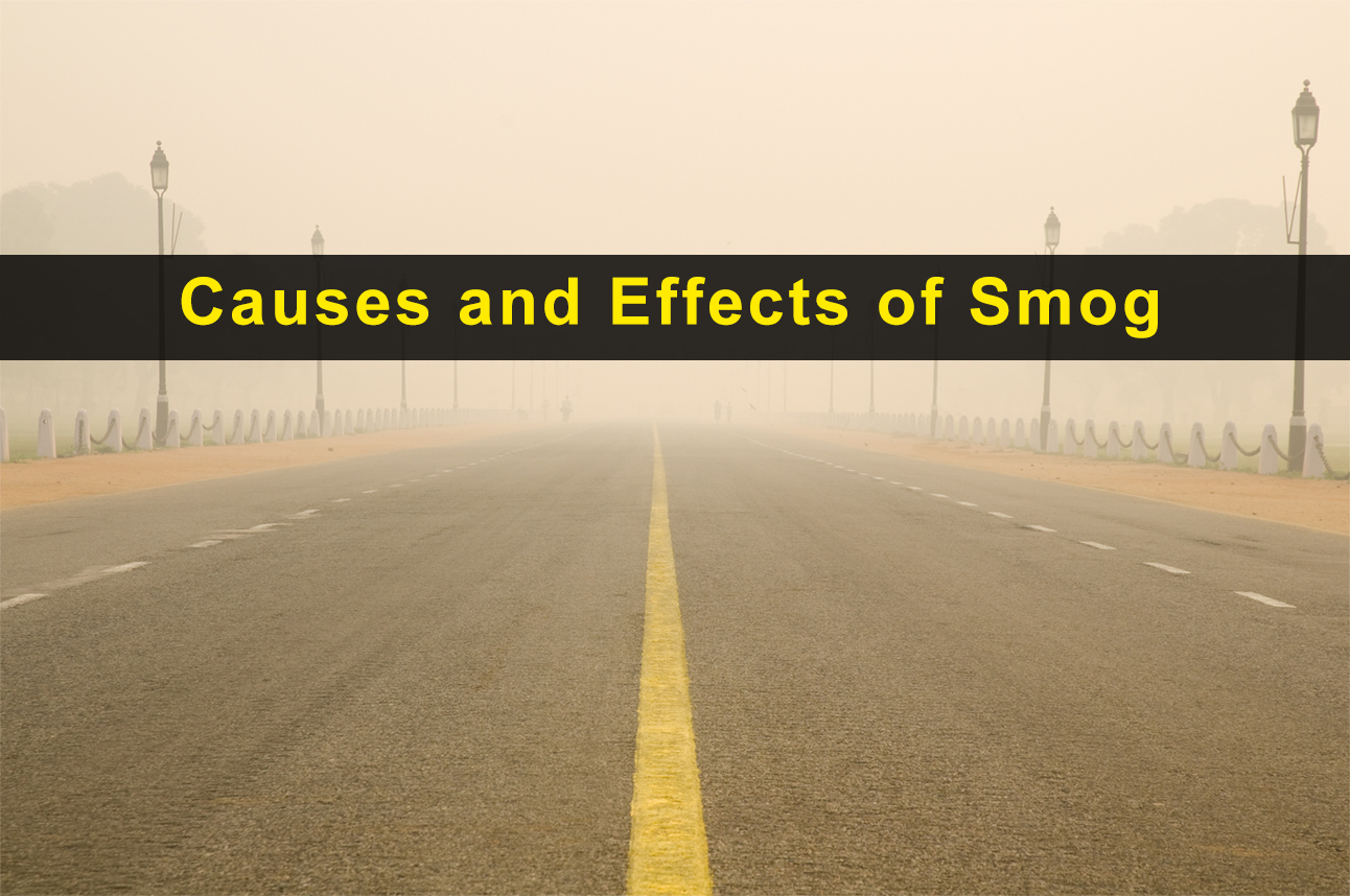 Causes and Effects of Toxic Smog