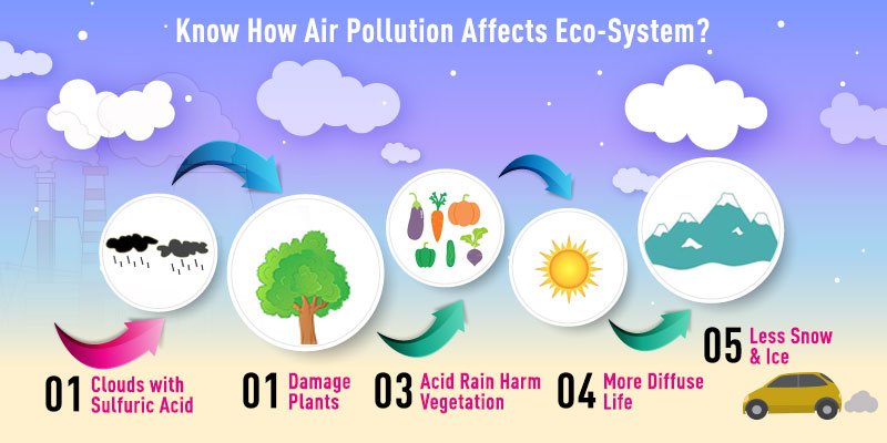 How Air Pollution Can Affect Ecosystem?