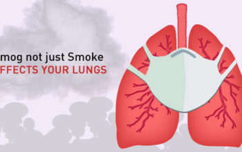 5 Harmful Effects: Smog Not Just Smoke Effects Your Lungs
